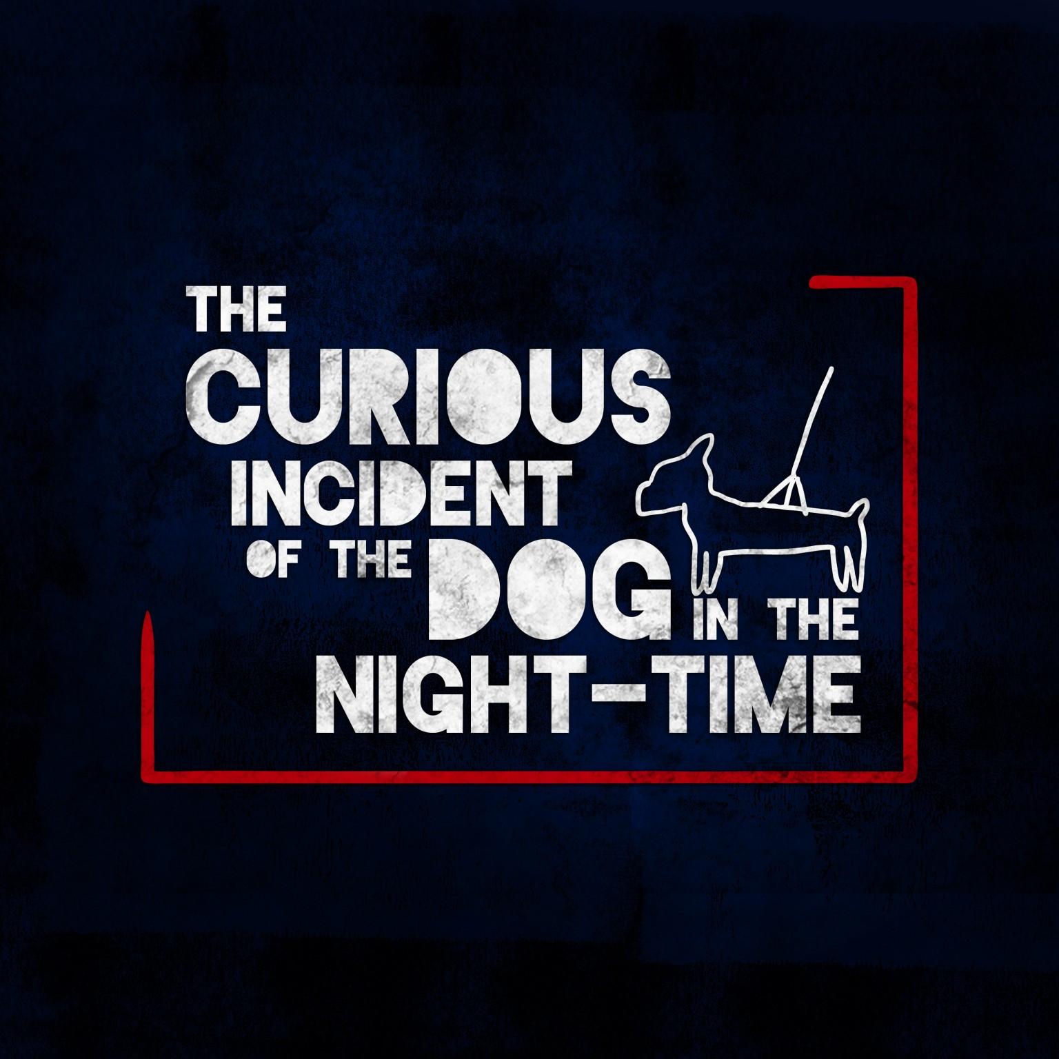 WEB_Curious